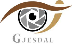 watermarks logo - Kenneth Gjesdal